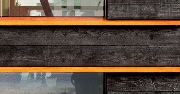 Charred Wood Wood Siding And Woods On Pinterest