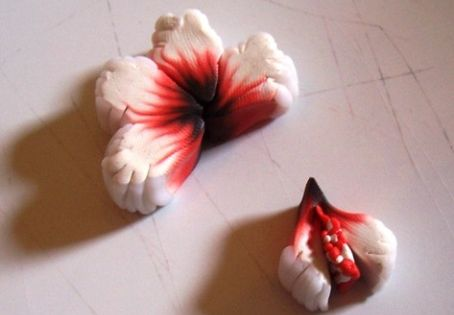 Cake Art Flower Moulding Paste Instructions : Hibiskus Cane Tutorial clay polymer and tutorials ...