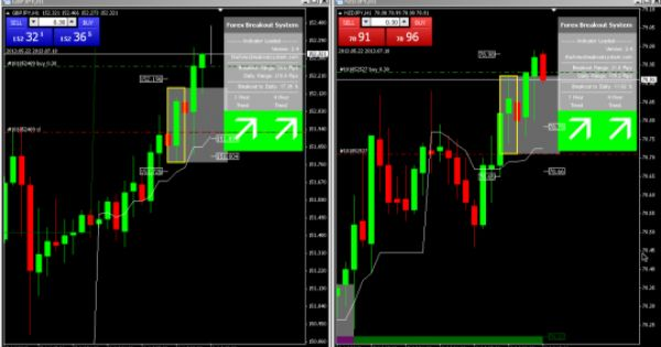 Archer Forex Signals Forex Signals Mentoring Live Trading And