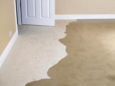 3 Types Of Water Damage That Could Affect Your Home In Mesa Az Https Www Rmraz Com Water Damage Mes Wet Basement Waterproofing Basement How To Clean Carpet