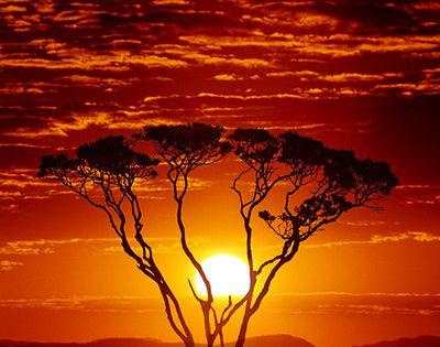 África, ese paraíso que por alguna razón extraña del destino le ha
