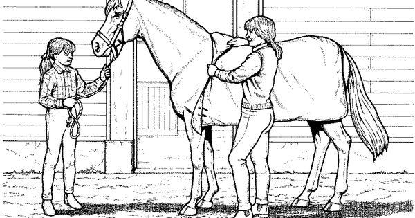 Ausmalbilder Pferde 07 | Ausmalbilder Pferde | Pinterest ...