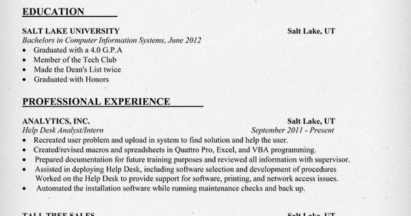 resume example entry level information technology