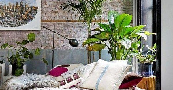 3 plantas de interior que necesitan poca luz plantas de - Plantas de interior que necesitan poca luz ...