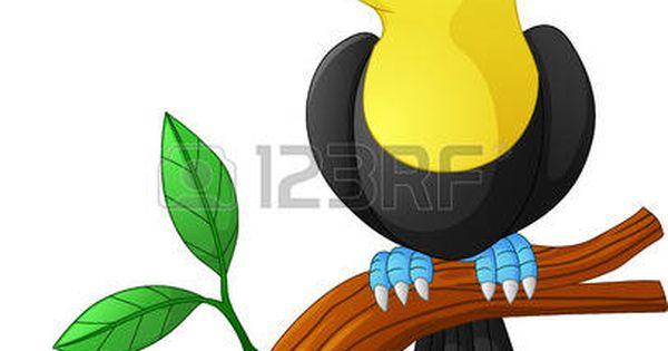 Tucan Animado: De Dibujos Animados Tucán Sentado En La