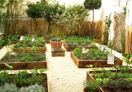 Quelles Plantes Pour Ma Terrasse Jardins Plates