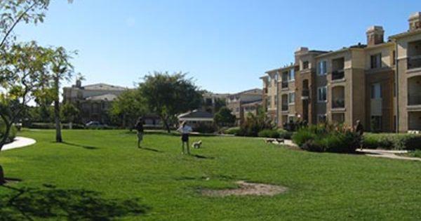 Avion At Spectrum Pet Friendly Apartments San Diego Ca Pet Friendly Apartments California Pet Friendly