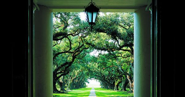 Inspiration for the Marston Plantation. Oak Alley Plantation by New Orleans Plantation