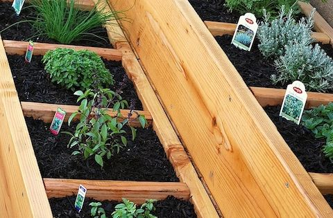 Lots of container vegetable garden ideas from Making Home Base