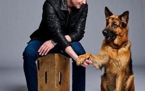 Hudson Rex Charming Canine Actor Challenges Us To Look At Animal Labour Https Flip It E2fnuw En 2020 Chien Policier Berger Allemand Chien