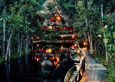 What a place! Sacha Lodge, Ecuador Travel