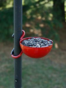 Bird Feeder Cup Red Red Bird Feeder Cups Wild Birds Wild Birds Unlimited Red Birds