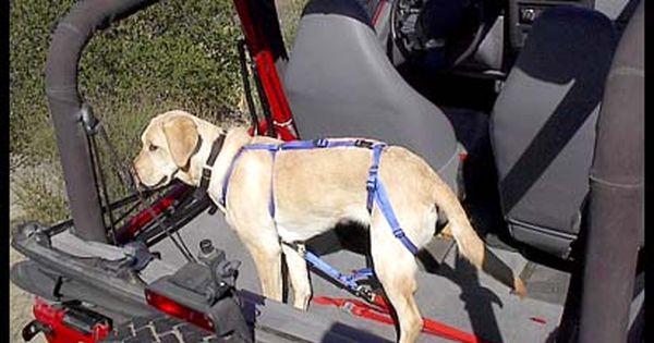 Gifts For Jeep Lovers >> Special Dog harness for Wrangler? - JeepForum.com | Trail Jeeps Memes | Pinterest | The floor ...