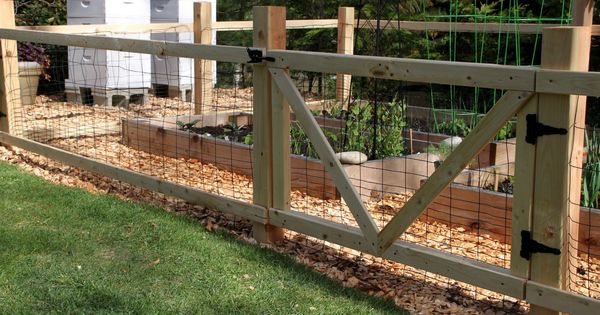 Garden fences to keep out animals here is what i did garden ideas pinterest garden - Garden ideas to keep animals out ...