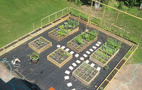 veggie garden ideas veggie garden ideas with useful designs concept pictures photos