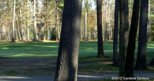 Souhegan Woods Golf Course Woods Golf Golf Courses Tree