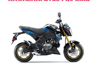 Kawasaki Z125 Pro Bike 2016 2018 Workshop Service Repair Manual Pdf Download Repair Manuals Pro Bike Repair