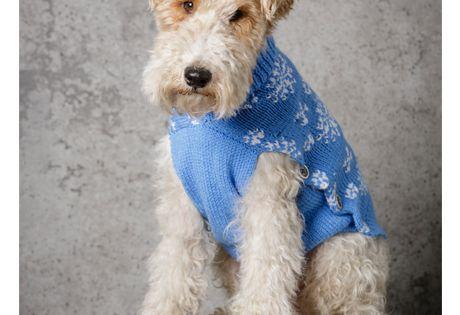 Special DK Pattern 9311 Dog Coat | Dog coats, Dog jumper
