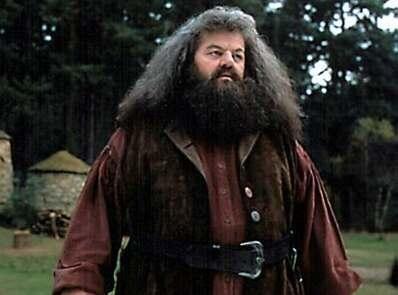 Hagrid Robbie Coltrane Harry Potter Series Harry Potter Characters Harry Potter Universal Hagrid
