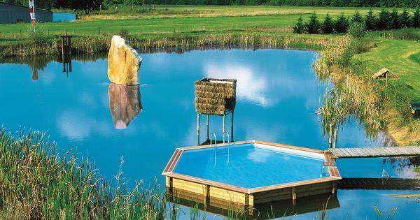piscinelle hexagonale implant e dans un tang pour y acc der un simple ponton piscine sur. Black Bedroom Furniture Sets. Home Design Ideas