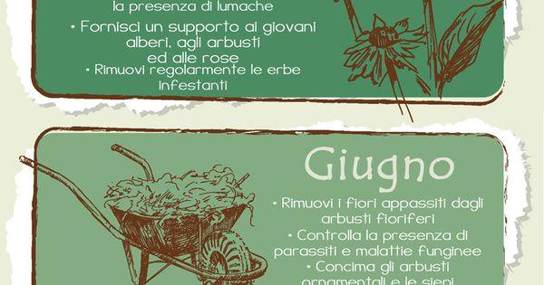 Infografica pratici consigli di giardinaggio mese per - Calendario semina fiori ...