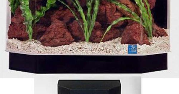 Seaclear 10 gallon 23 lx11 wx19 5 h flat back hexagon fish for 10 gallon hexagon fish tank