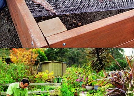 Line Your Raised Bed With Chicken Wire To Keep Out Gophers And Moles My Favthings Chicken