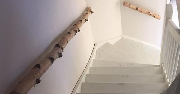 Berkenstam als trapleuning berken stammen in het interieur pinterest - Verlicht bois moderne ...