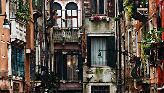 Venice, Italy looks to be the loveliest place. Doors and windows everywhere.