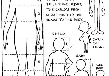 Correct Human Figure Proportions & What is Meant by Out of Proportion.