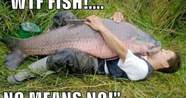 Wtf fish no means no i literally l o l 39 ed literally for Funny fishing pics