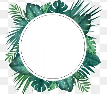 Green Little Refreshing Tropical Palm Leaf Circular Border Wreath Clipart Palm Leaf Botany Png Transparent Clipart Image And Psd File For Free Download Tropical Frames Flower Frame Watercolor Leaves