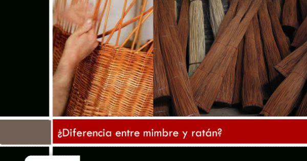 Cu l es la diferencia entre mimbre y rat n mimbre es el for Diferencia entre halla y living room