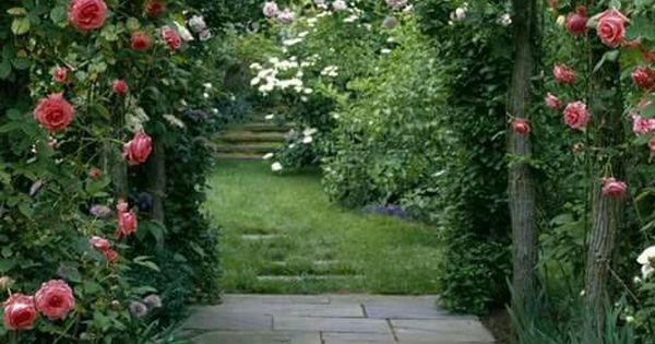 Types of fragrant climbing plants climbing climbing flowers and types of - Climbing plants that produce fragrant flowers ...