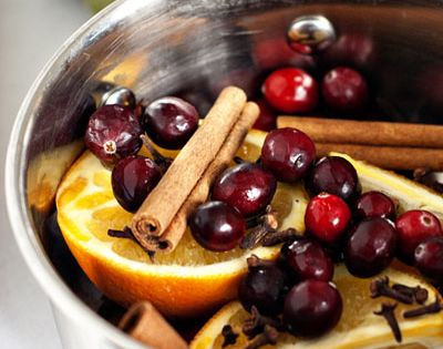 Holiday Stove-top Potpourri... makes your house smell heavenly! kids can help gather