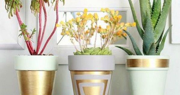 Diy Projects And Ideas For The Home Cheapest Flowers