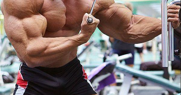 Quads, Triceps, Biceps...
