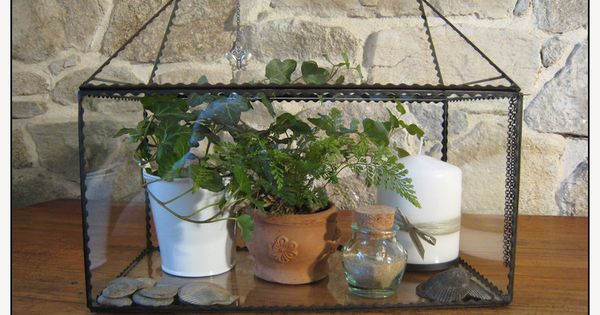 serre d 39 int rieur terrarium mini jardin garden pinterest minis deco and terrarium. Black Bedroom Furniture Sets. Home Design Ideas