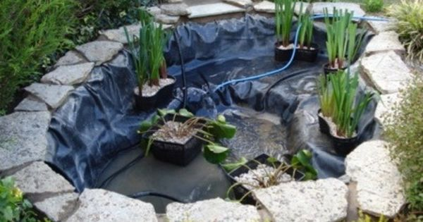 How to make a small pond well this one is about 1 3 of for Small frog pond ideas