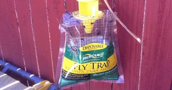 Rescue Disposable Fly Trap Ftd Db12 The Home Depot Fly Traps Ftd Disposable