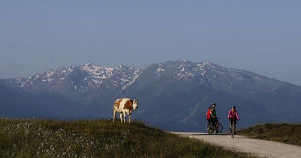 Mountain Bike Tirol Mountain Biking Tirol Bike