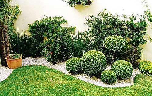 Plantas decorativas para jardines peque os ideas for Ideas de jardines exteriores pequenos