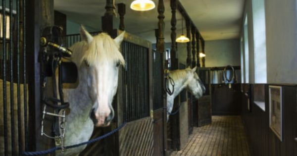 Horses In The Working Stables At Arlington Court North Devon C National Trust Images Mark Bolton North Devon