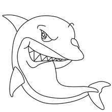 Dibujo De Un Tiburon Dibujos Para Colorear Y Pintar
