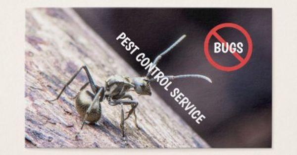 Exterminator Pest Control Original Image C Referral Card Zazzle Com Business Card Original Pest Control Diy Business Cards
