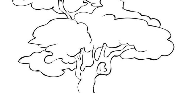 Pecan Tree Coloring Page Di 2020