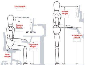 Lifehacker Do Everything Better Desk Height Desk Dimensions