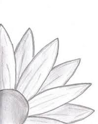 Image Result For Easy Sketch Ideas For Beginners Daisy Drawing