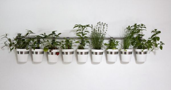 Ikea cutlery caddy used as a planter outdoor for Indoor wall planters ikea