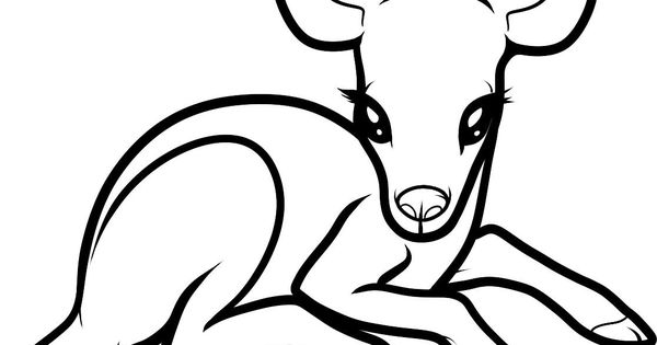 google coloring pages baby animals - photo#26